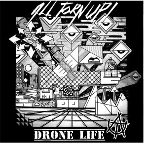 All Torn Up - Drone Life - (cd)