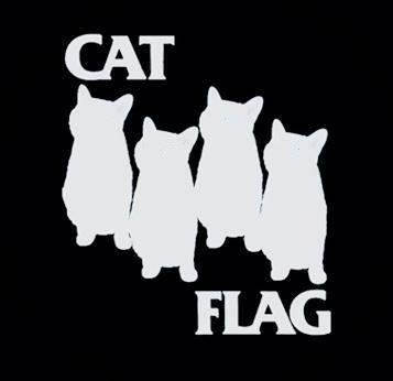 Cat Flag - Hooded Sweatshirt