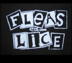 FLEAS AND LICE - Name - Patch